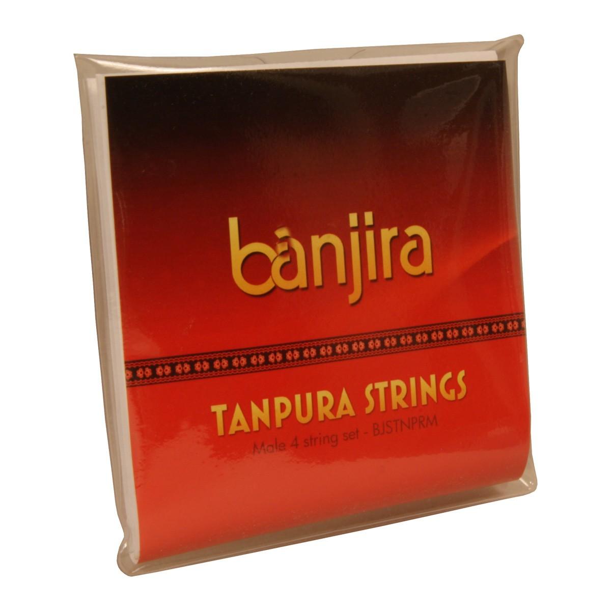 banjira Male Tanpura String Set