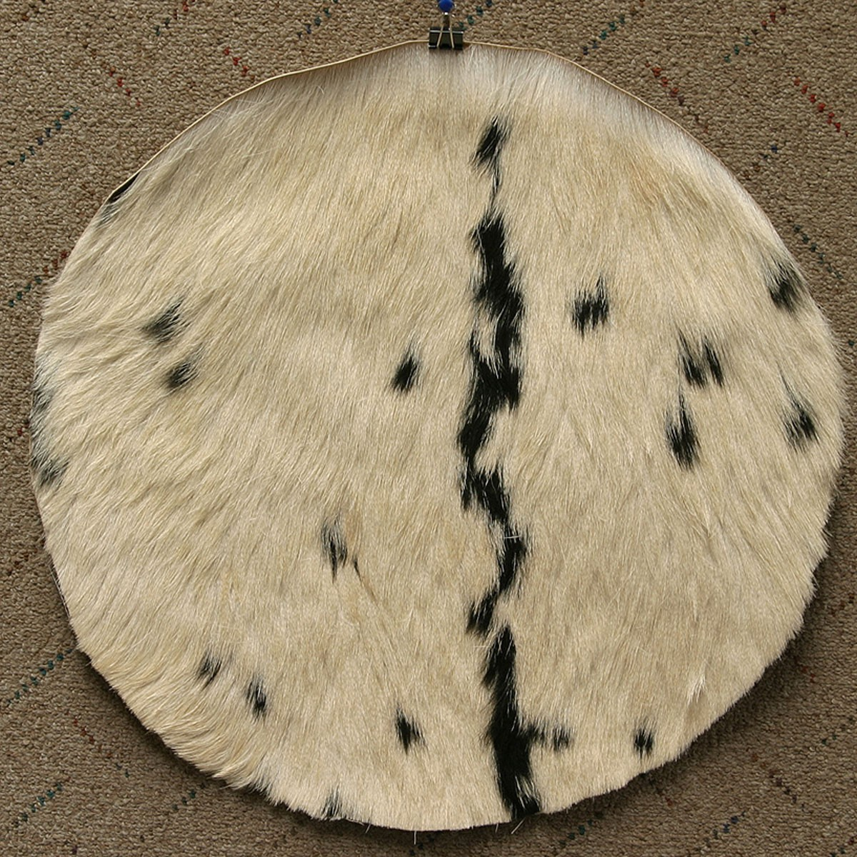 Goatskin w/ Hair 18' - Thin