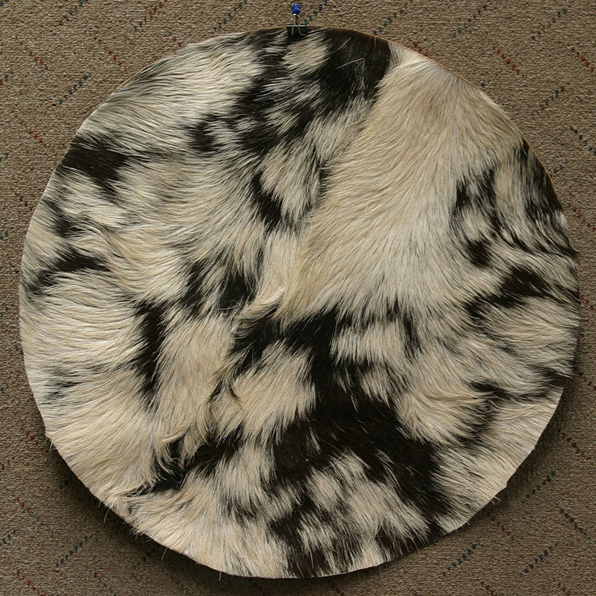 Goatskin w/ Hair 22' - Medium