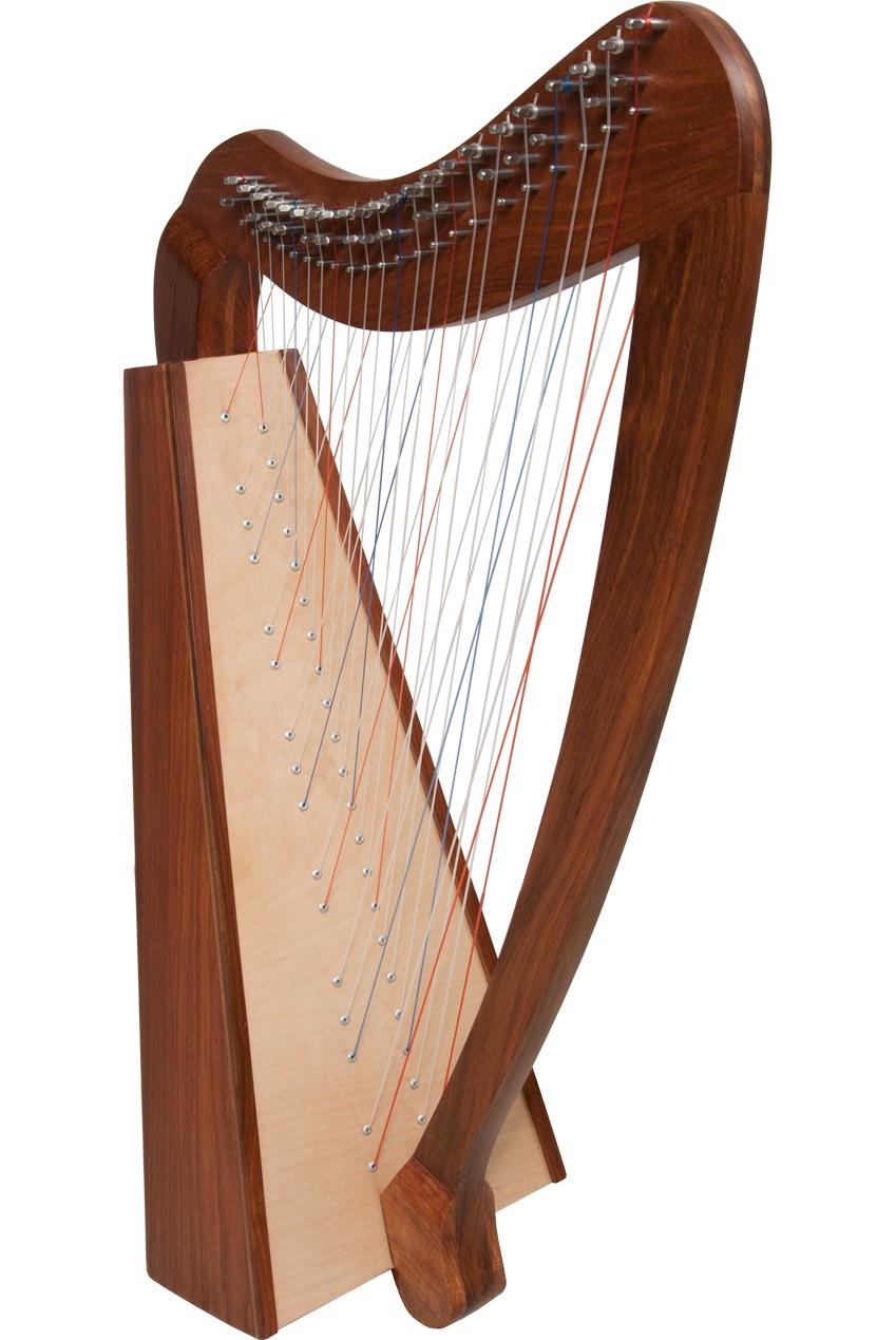 Roosebeck Cross Strung Caitlin Harp 38-String *Blemished