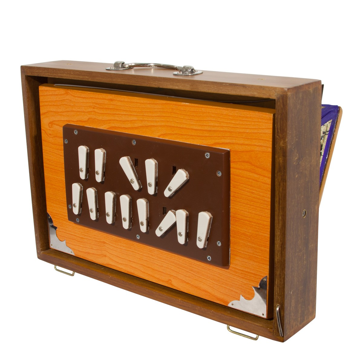 banjira Deluxe Shruti Box w/ Side Controls 4C-5C